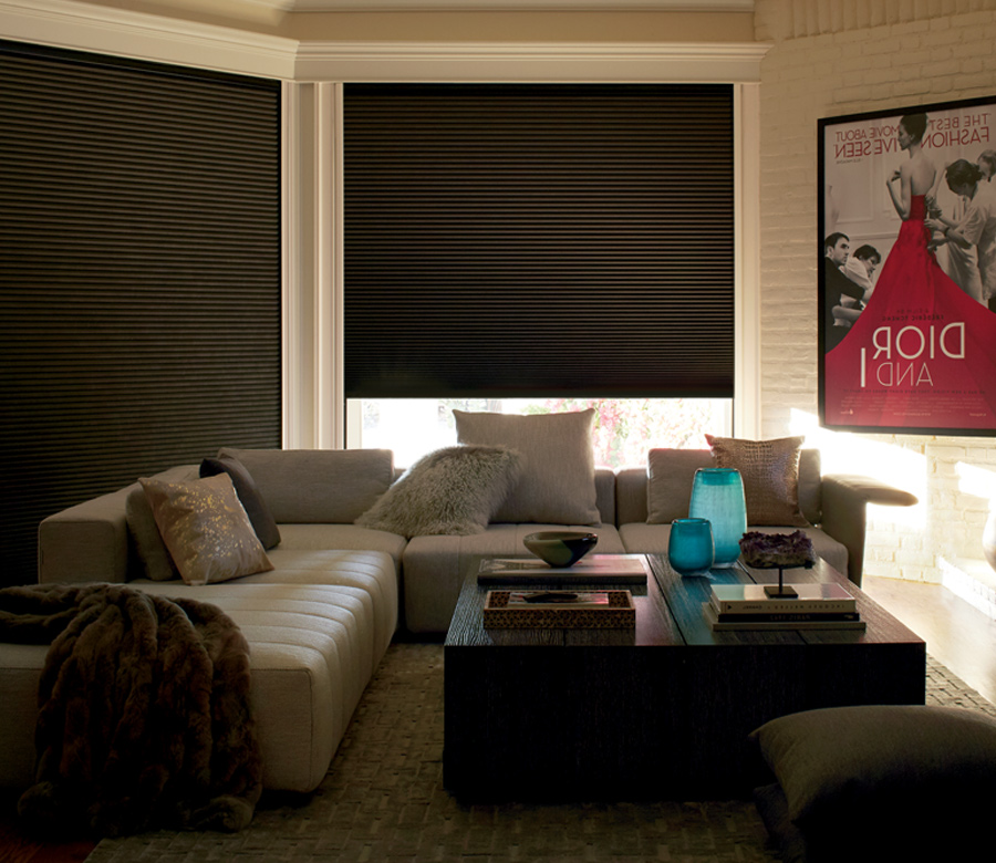 living room with brown duette honeycomb shades Hunter Douglas Naples