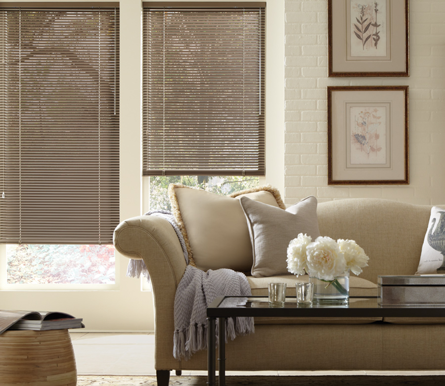 traditional living room with hunter douglas horizontal aluminum blinds Fort Myers
