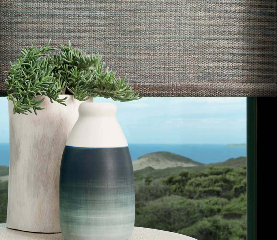 greenery with hunter douglas designer roller shades fort myers