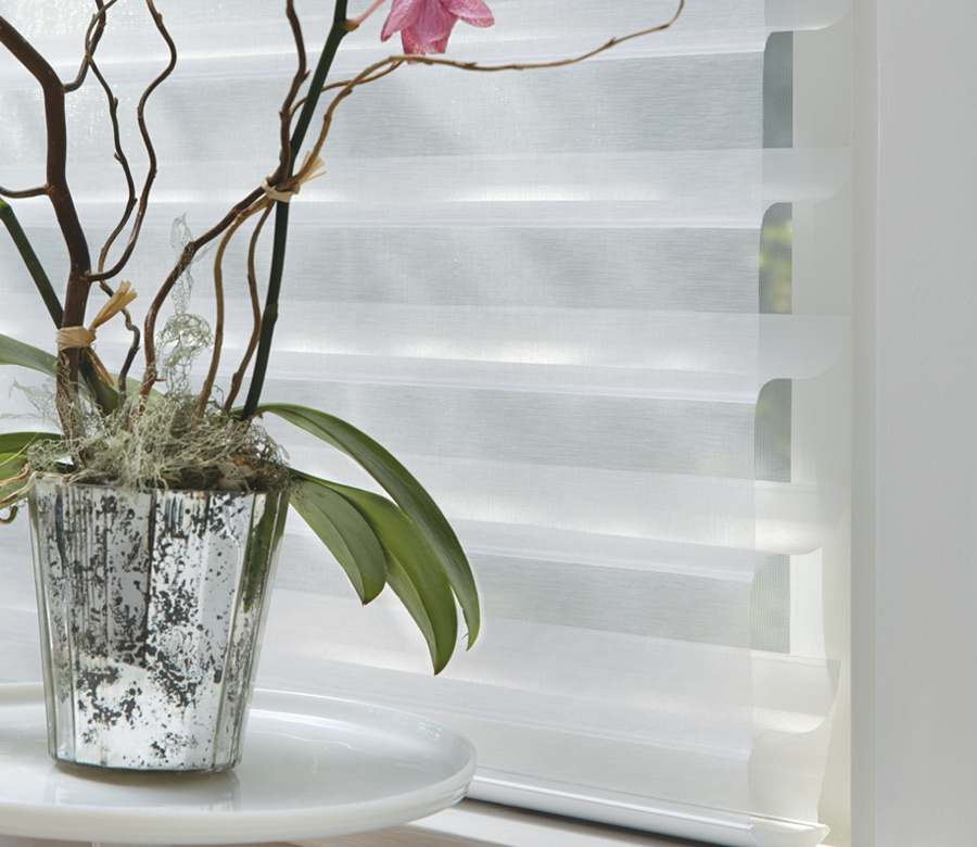 plant with silhouette window shades hunter douglas Naples 34119