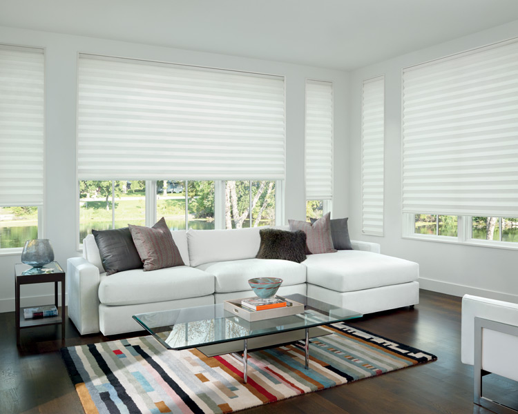 living room hunter douglas motorized roman shades Fort Myers