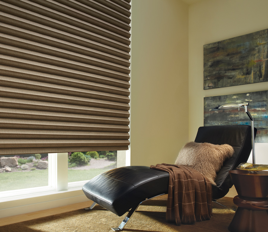 large window with hunter douglas solera fabric roman shades Fort Myers 33908