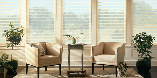 modern living room in Fort Myers with two armchairs and Hunter Douglas white pirouette window shades style statement