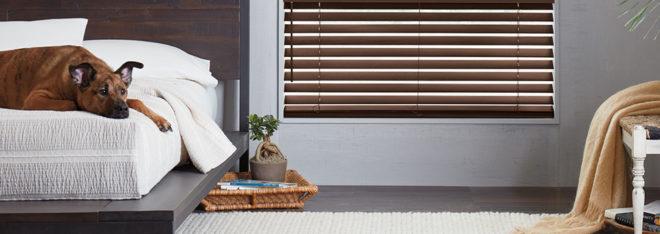 pet safe blinds Fort Myers FL