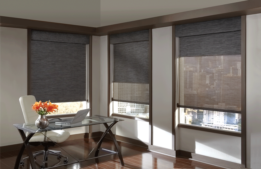 Dual shades offer a lot of functionality all in one system.