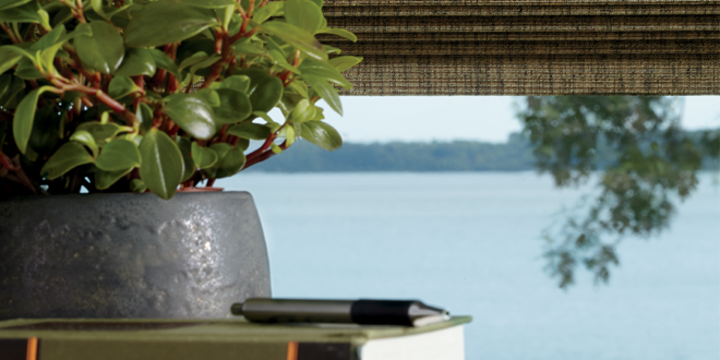 nature to inspire decor in your fort myers home