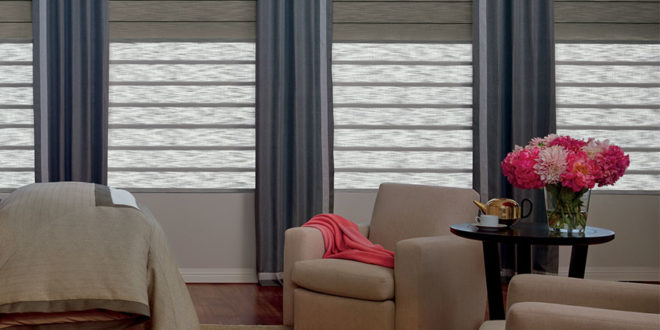 Hunter Douglas Duolite® shades in sitting room