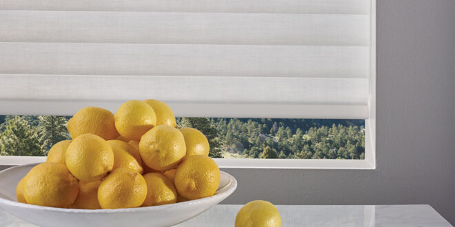at home blinds pantone color of the year