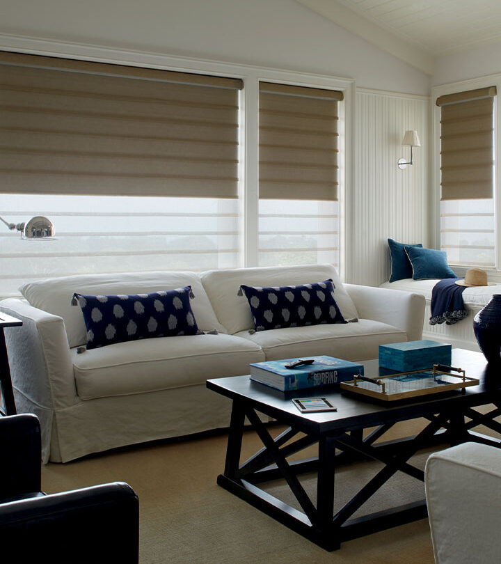modern roman shades with dual shades for light control