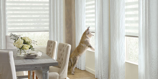 pet friendly window coverings for your home in Fort Myers FL